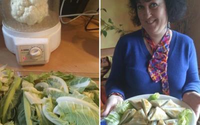 Zéro Gaspi ! : Samossas au vert de choux-fleur